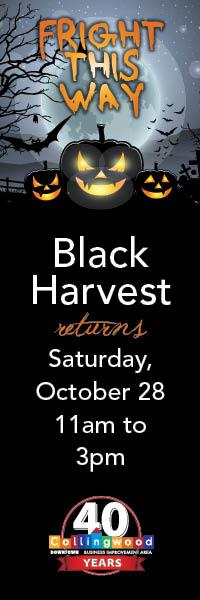BIA-BlackHarvest-200x600-2017